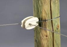 Photo of wire insulator on fence post