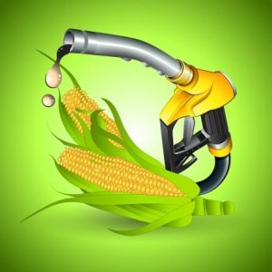 Ethanol and Agriculture