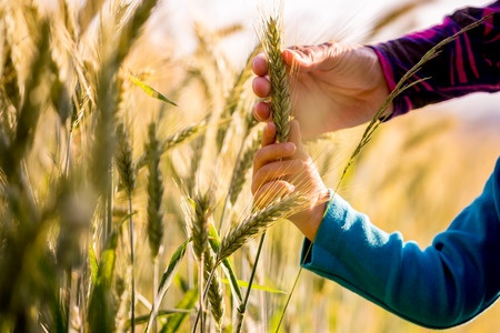 Improving Access to Ag Education
