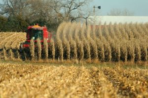 Fast Facts About Nebraska's Agriculture Industry